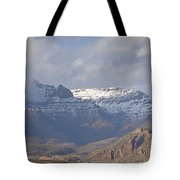 Horses In North Fork Canyon   #4876 Tote Bag