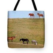Horses Of Hayward Tote Bag