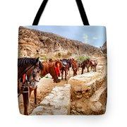 Horses Of Petra Tote Bag