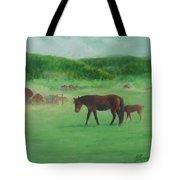 Horses Rural Pasture Western Landscape Original Oil Colorful Art Oregon Artist K. Joann Russell Tote Bag