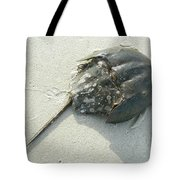 Horseshoe Crab - Limulus Polyphemus Tote Bag