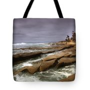 Horseshoes Beach Tote Bag