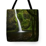 Horsetail Falls Columbia River Gorge Tote Bag