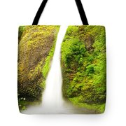 Horsetail Falls In The Spring Tote Bag