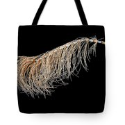 Horsetail On Black Tote Bag
