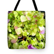Hortensia With Touch Of Pink Tote Bag