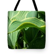 Hosta Leaves After The Rain Tote Bag