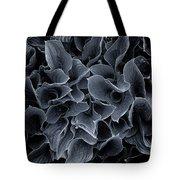 Hosta Leaves Bw Tote Bag