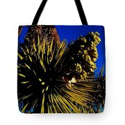 Hot 2014 Tote Bag