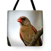 Hot Cardinal Tote Bag