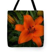 Hot Orange Lily  Tote Bag
