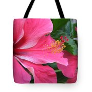 Hot Pink Hibiscus 2 Tote Bag