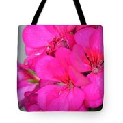 Hot Pink In February Tote Bag