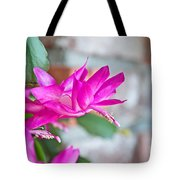 Hot Pink Christmas Cactus Flower Art Prints Tote Bag