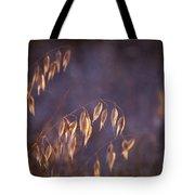 Hot Summer Light Tote Bag