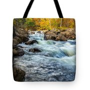 Housatonic River Autumn Tote Bag