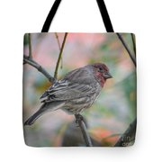 House Finch In Autumn Tote Bag