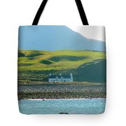 House On The Shore Tote Bag