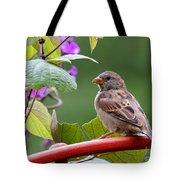 House Sparrow On A Wheel Tote Bag