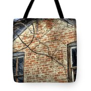 House Two Windows 13089 Tote Bag