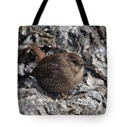 Winter Wren Dsb188 Tote Bag