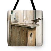 House Wren Feeding Time Tote Bag