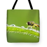Hoverfly In Dew Tote Bag