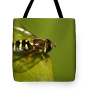 Hoverfly On A Leaf Tote Bag