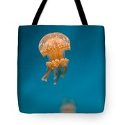 Hovering Spotted Jelly 1 Tote Bag