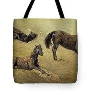 How A Black Horse Turns Brown - Pryor Mustangs Tote Bag