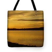 How Many Birds Can You Count? Tote Bag