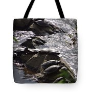 How Many Turtles Tote Bag