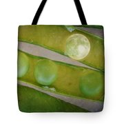 How The Moon Was Born Tote Bag