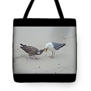 How To Eat A Blue Crab - Great Black Backed Gull In Training Tote Bag