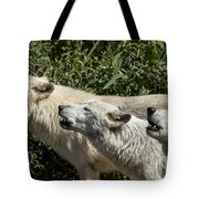 Howlin Artic Wolves Tote Bag