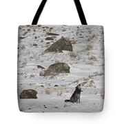 Howlin' In The New Year   #3536-signed Tote Bag