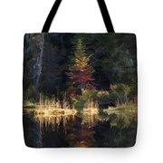 Huff Lake Reflection Tote Bag