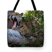 Hugo Waking 5 Tote Bag