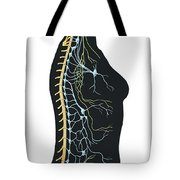 Human Body Showing Autonomic Nervous Tote Bag