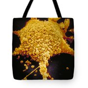 Human Cell Infected With Mycoplasma Tote Bag by David M. Phillips