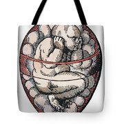 Human Fetus, 16th Century Tote Bag