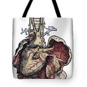Human Heart, 1543 Tote Bag