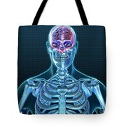 Human Skeleton And Brain, Artwork Tote Bag