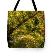 Humber River 5 Tote Bag