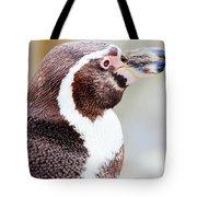 Humboldt Penguin Portrait Tote Bag