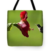 Hummer At The Hibiscus Tote Bag
