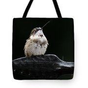 Hummer In The Rain II Tote Bag