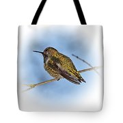 Humming Bird And Snow 3 Tote Bag