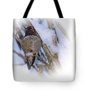 Humming Bird And Snow 5 Tote Bag