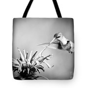 Hummingbird Black And White Tote Bag
